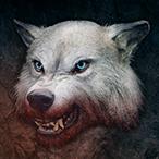 L'avatar di SteHCW